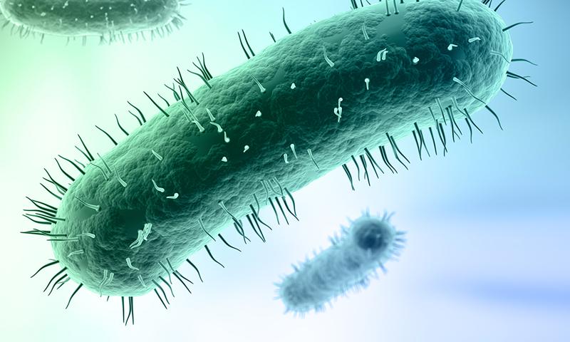 Mycoplasma genitalium - супербактерия
